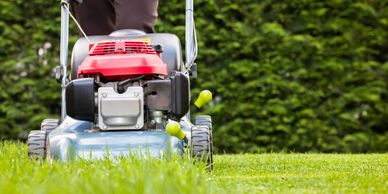 Lawn Mowing,Grass cutting,Yard clean up