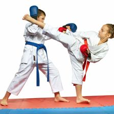 Villari's Advanced Training Program and Black Belt Club