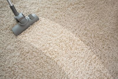 carpet cleaning in mill valley