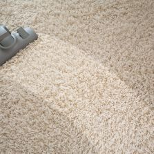 Joseph The Butler Carpet And Upholstery Cleaning Home
