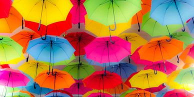 Umbrella & Excess Insurance