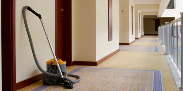 Neat Nix Carpet Care Carpet Cleaning Upholstery Cleaning