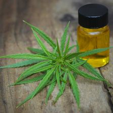 cannabinoid oil non-narcotic legal in all states