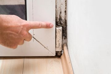 Mold Inspection, Removal, and Remediation