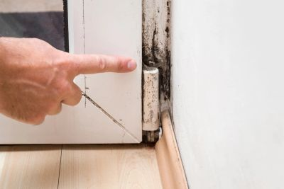Hire Home Enviro Mold Inspection to give you an unbiased opinion about visible mold and its impact.