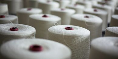 many spools of natural cotton yarn