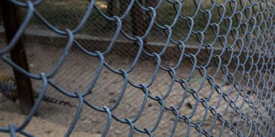 Chain Link Fence Wilmington North Carolina