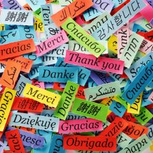 "Colorful pile of slips of paper with ""thank you"" in many languages."