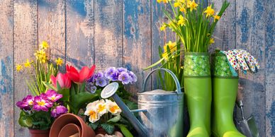 Spring home maintenance and organization