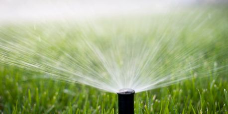 Pop Up Sprinkler Head