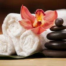 massage workshops, one day courses, one day workshops