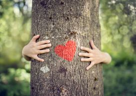 Hands hugging a tree trunk with a heart painted on it
