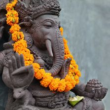 click Ganesha if you are a Yoga Teacher looking for holistic workshops for professional development