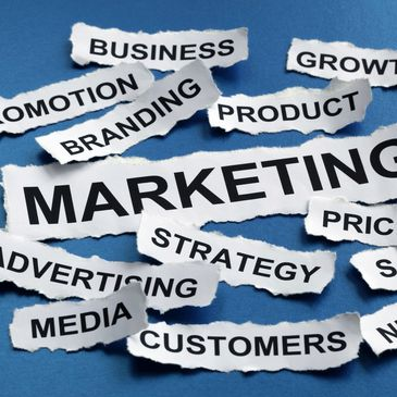 Marketing advice, strategy and branding