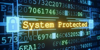 image of a protected system