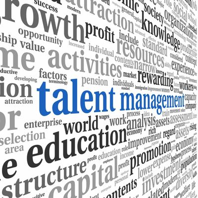Talent Acquisition, Employee Retention,  Training & Development, Employee Relations