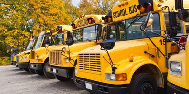 school buses are pathogen free, safe for kids