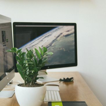Working station with 2 iMac Screens and decorations