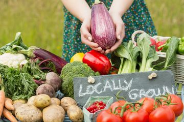 Locally grown fresh produce at a farmstand in the summer