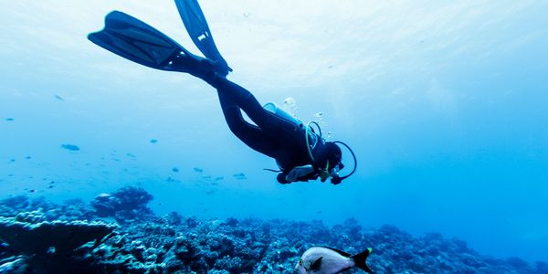 Whether a beginner or an experienced diver, we have the right offer
