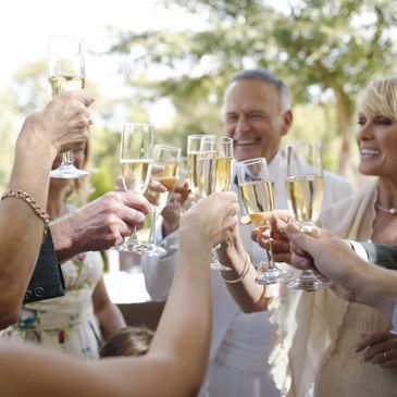 Group Champagne Toast at Wedding