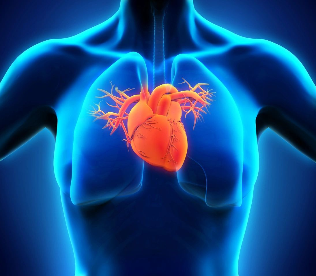 Ways to improve your heart health   Telehealth Medicine   Telehealth and Biohacking solutions   Kiya Longevity