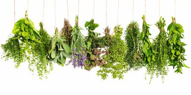 """Herbalism  is based on relationship - relationship between plant and human, plant  and planet, hum"