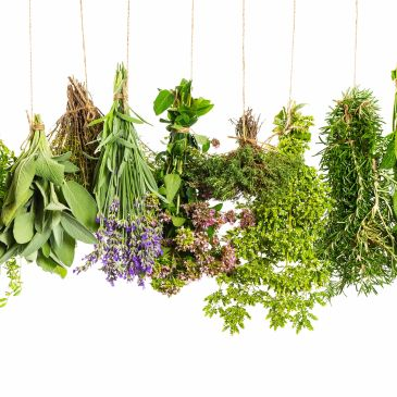 Blends of herbs for health and wellbeing