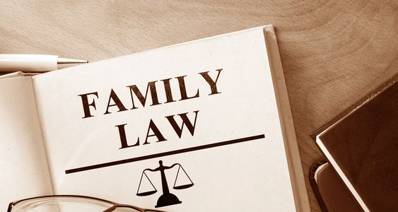 Family Lawyer, marriage, divorce, separation, custody, access, child support.