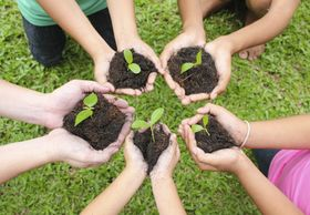 Five hands in a circle holding newly grown plants in soil. Signifies birth in a support group.