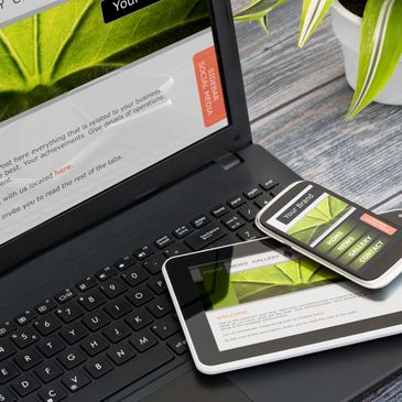 Weedmaps, MJ Buddy, Biotrack, patient access