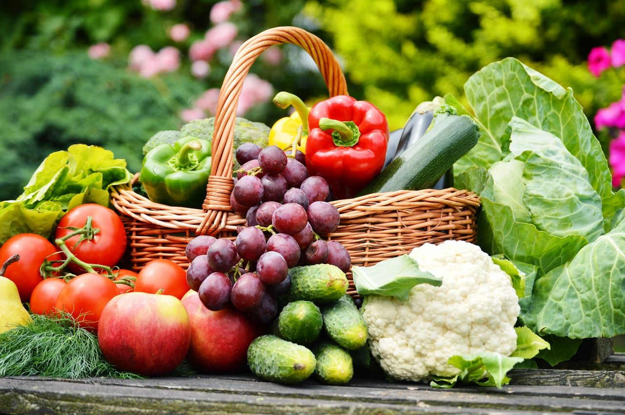 Vibrational Food to Nourish Your Body