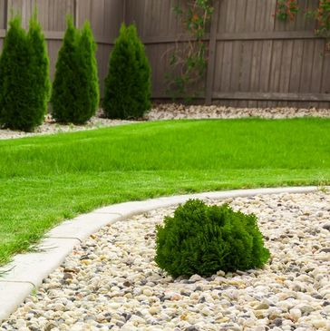 Lawn Care, fertilization, weed control, Wixom, Canton, waterford, Michigan. Top Lawn.