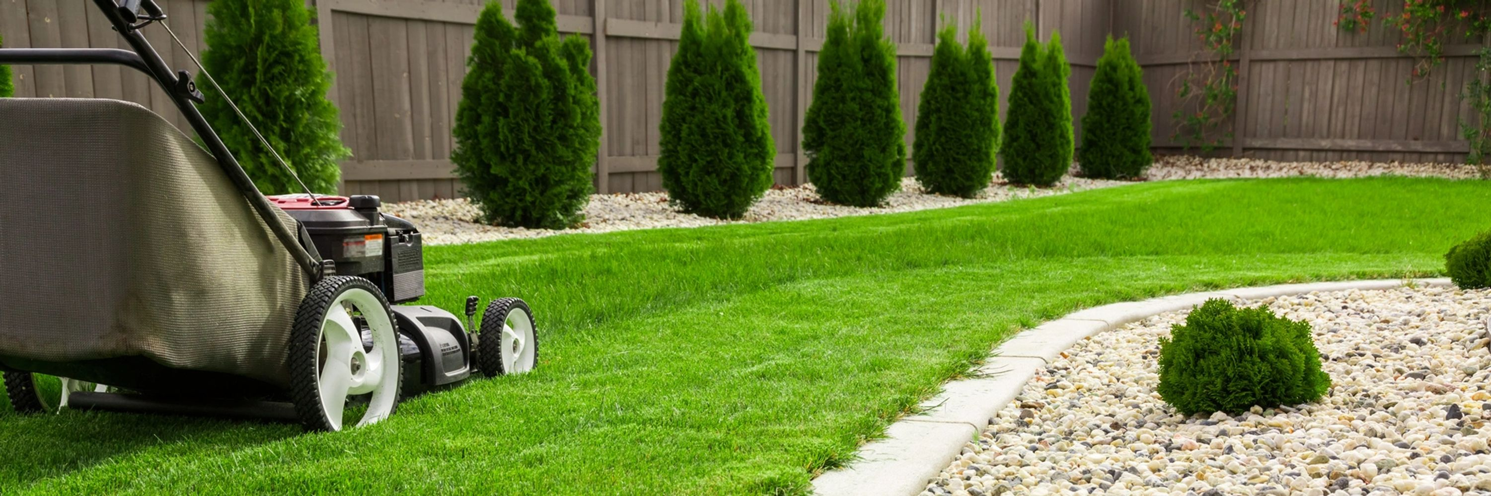 Lawn Colorant Beautiful Yard with Lush Turf from Organic Long Lasting Pigment sprays.