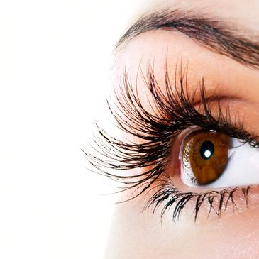 Lash Extensions, Massage, Facials, Skin Care, Body Treatment, Waxing, Microblading, Farmhouse Fresh, Image Skincare, Men's Facials, Vaginal Rejuvenation, Foot Reflexology, Detox Wraps, Sauna, Spa, Spa Packages