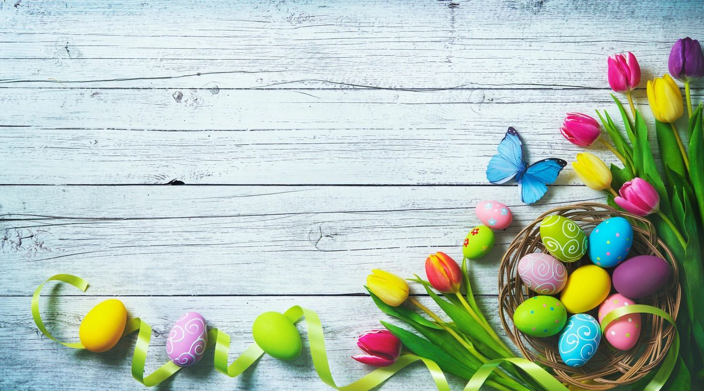 white barnboard, with blue butterfly,colored eggs in basket, tulips and ribbon in lower right corner