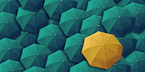 A yellow umbrella in a sea of blue umbrellas symbolising Project Manager standing out in a crowd