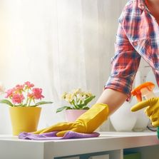 Eclectic Domestics Housekeeping Services in Bucks County PA