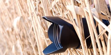 "A camera hidden in long grass to depict ""Stalking and monitoring"""