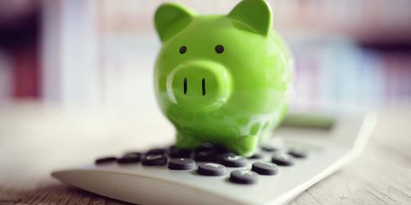 Green pig bank and calculator