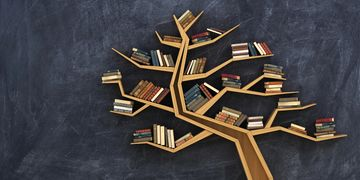 bookshelf with branches holding books