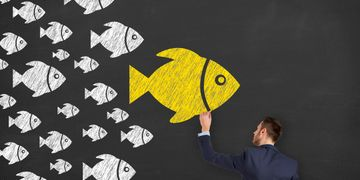 Sales Training and Management make you the BIG FISH in business development.