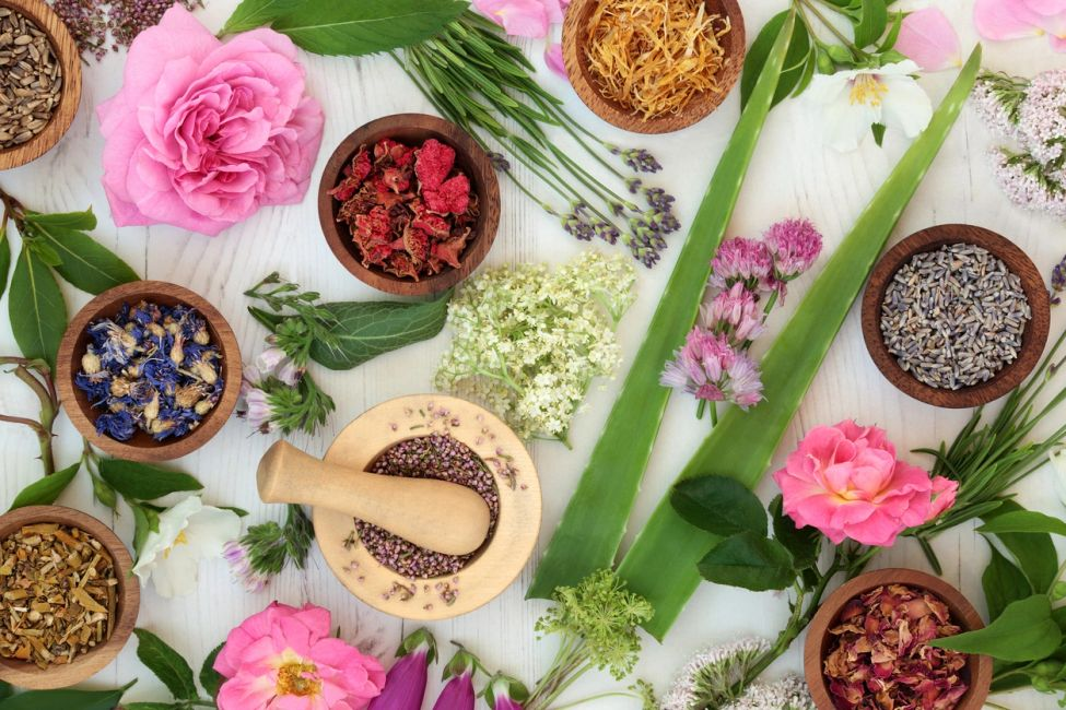 Image of dried herbs in small wooden bowls, flowers, and mortar and pestle.