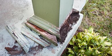 Wood destroying insect inspection/Termite inspection