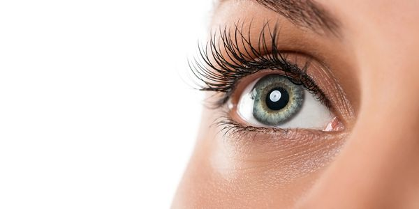 lash lifts, tinting, waxing, female waxing, Geelong, Grovedale.