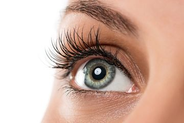 Eyelash perming will keep a lasting curl all the way thru the life of the eyelash. Lasts 6-12 weeks.