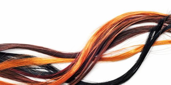 Strands of different color hair