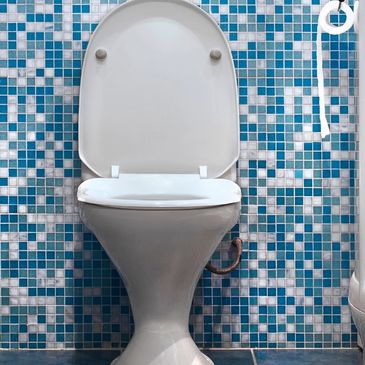 Clogged toilets. Overflowing toilet. Greenwood Plumbers. Running toilets. Toilet Replacement.