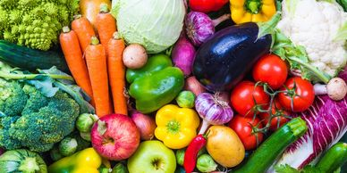 transition to vegetarian - plant-based diet