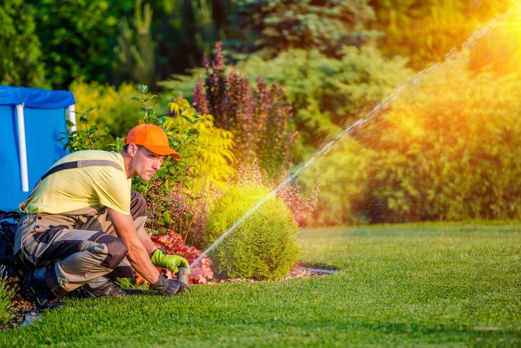 We offer a variety of quality lawn care services.
